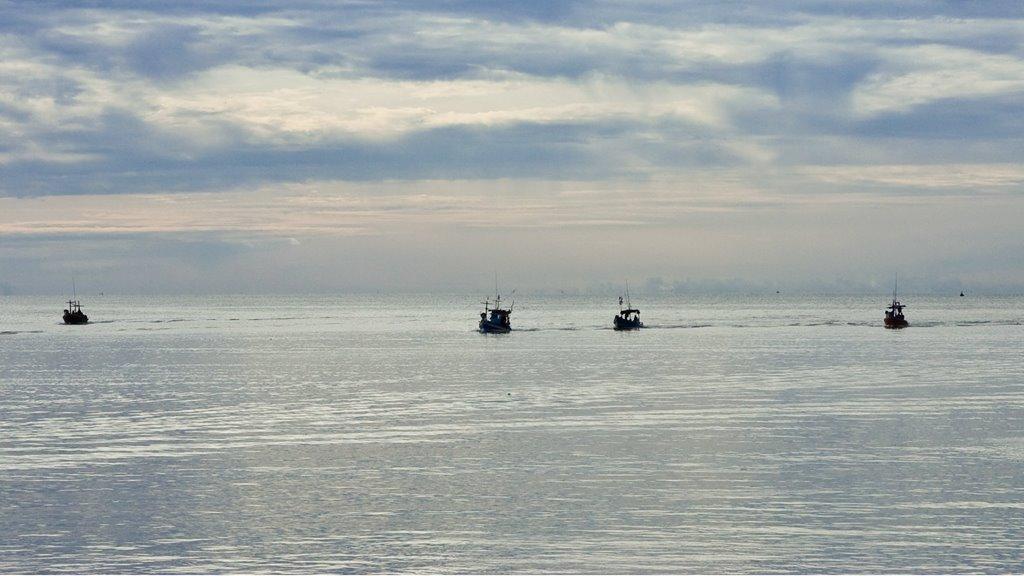 Uppboðssøla av fiskirættindum á Flemish Cap 2019