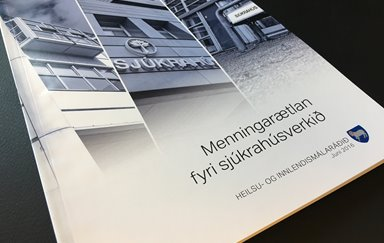 Development plan for the hospital service